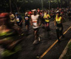 【blog】20181210 ホノルルマラソン 2018